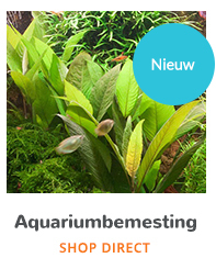 De aquarium experts